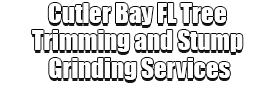 Cutler Bay FL Tree Trimming and Stump Grinding Services