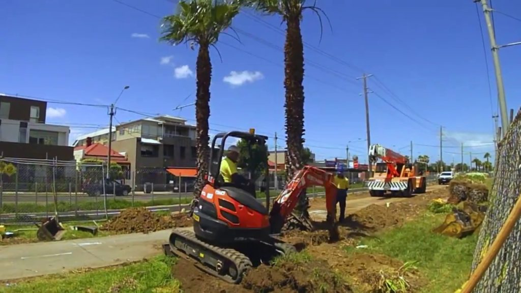 Palm Tree Removal-Cutler Bay FL Tree Trimming and Stump Grinding Services-We Offer Tree Trimming Services, Tree Removal, Tree Pruning, Tree Cutting, Residential and Commercial Tree Trimming Services, Storm Damage, Emergency Tree Removal, Land Clearing, Tree Companies, Tree Care Service, Stump Grinding, and we're the Best Tree Trimming Company Near You Guaranteed!